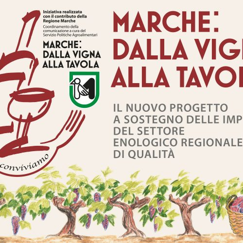 Prog-Marche-Madia-News