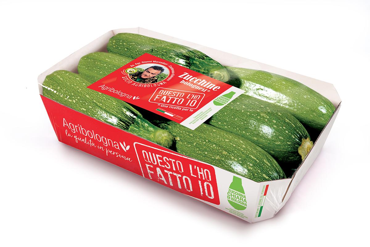 Zucchina Chiara di Bologna