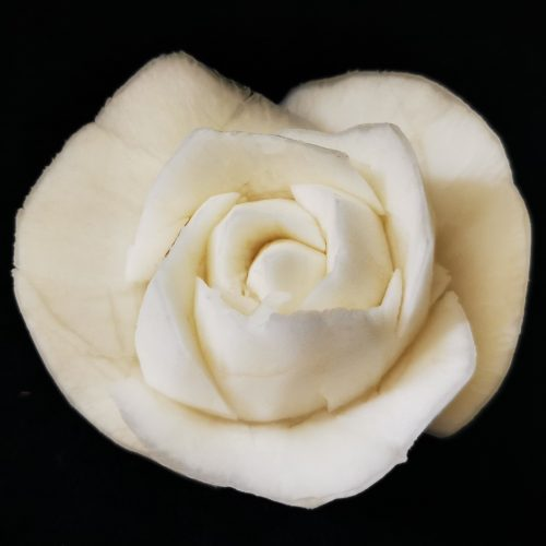 intagliare la rapa bianca come una rosa